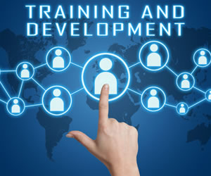 img_training_services